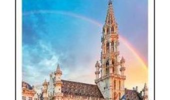 Cartea DK Eyewitness Top 10 Brussels, Bruges, Antwerp and Ghent (download, pret, reducere)