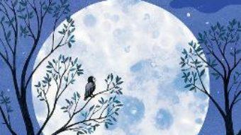 Cartea Luna – Laura Cowan, Diana Toledano (download, pret, reducere)