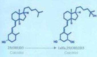 Cartea Sistemul Endocrin Al Vitaminei D Vol.1 – Doru Dejica, Valeria Dejica (download, pret, reducere)