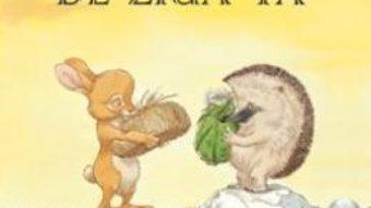 Cartea Cadou de ziua ta – Paul Stewart, Chris Riddell (download, pret, reducere)
