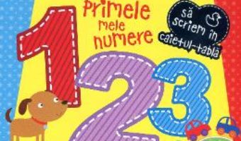 Download Primele mele numere – Caiet tabla PDF Online