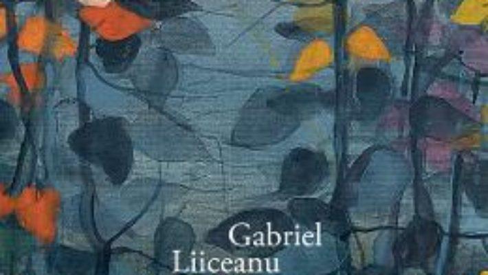 Cartea Declaratie de iubire (ed. de lux) – Gabriel Liiceanu (download, pret, reducere)