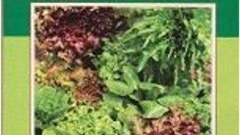 Pret Carte Cultura Legumelor Verdeturi – Elena Maria Draghici
