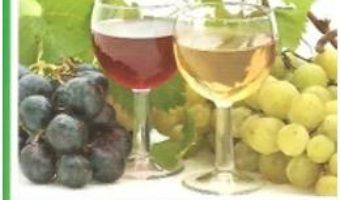 Cartea Limpezirea Vinului – Georgeta Septilici (download, pret, reducere)