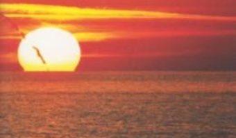 Meditatie Pentru Viata – Robert Buttera PDF (download, pret, reducere)
