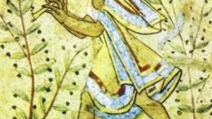 Cartea Odysseia – Homer L1 (repovestire De Maria Dumitru) pdf