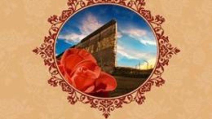 Cartea Zorii libertatii – Michael Phillips pdf