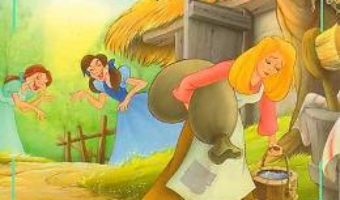 Cartea Cenusareasa – Povesti clasice (download, pret, reducere)
