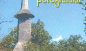 Cartea Gandurile peregrinului – Gavril Cornutiu pdf