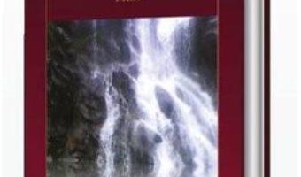 Cartea Celalalt, hotar cu mine – Codrut Radi (download, pret, reducere)