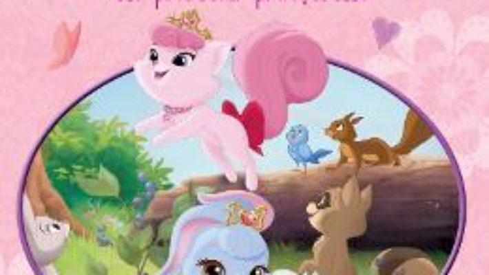 Cartea Palace pets – Povesti si jocuri cu prietenii printeselor – Sa le cunoastem pe Afina si Frumusica pdf