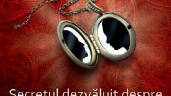 Cartea Secretul Dezvaluit Despre Partenerii Oglinda – Ruediger Schache (download, pret, reducere)