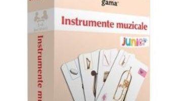 Download Instrumente muzicale – Carti de joc educative pdf, ebook, epub