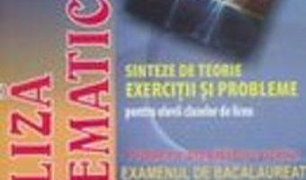 Carte Analiza Matematica – Sinteze De Teorie. Exercitii Si Probleme – Catalin-Petru Nicolescu PDF Online