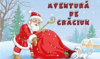 Cartea Aventura De Craciun (download, pret, reducere)