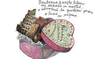Download Dictionarul maruntisurilor – Simona Vasilache pdf, ebook, epub