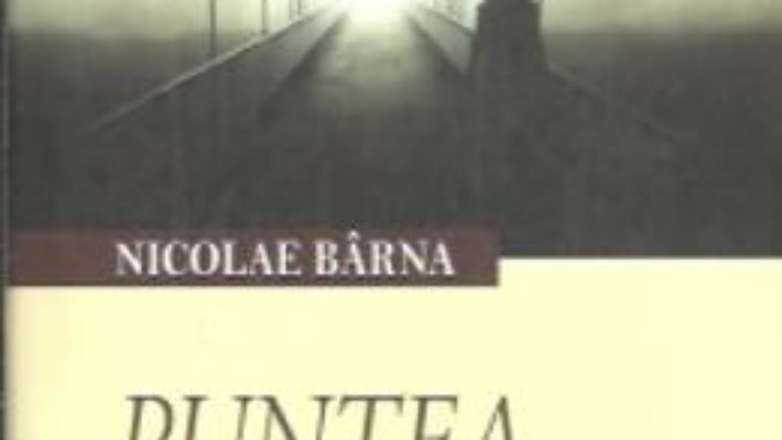 Download Puntea artelor – Nicolae Barna pdf, ebook, epub