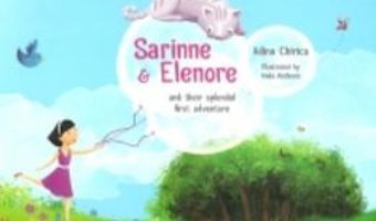 Download Sarrinne and Elenore and Their splendid first adventure – Adina Chirica pdf, ebook, epub