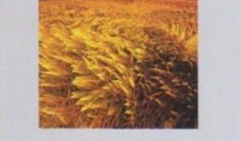Download Ostrakon Ii – Ion Popescu-Bradiceni pdf, ebook, epub