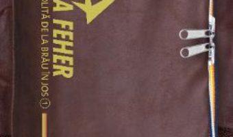 Cartea America dezgolita de la brau in jos 1 – Raluca Feher (download, pret, reducere)