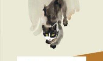 Pisica musafir – Takashi Hiraide PDF (download, pret, reducere)
