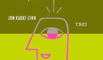 Mindfulness pentru incepatori – Jon Kabat-Zinn PDF (download, pret, reducere)