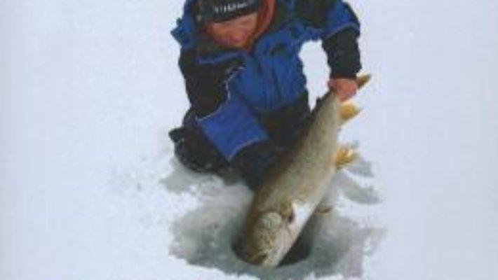 Pescuitul la copca – Tim Allard PDF (download, pret, reducere)