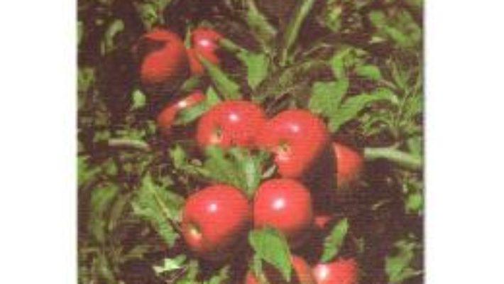 Pomii fructiferi – Adrian Chira, Lenuta Chira PDF (download, pret, reducere)
