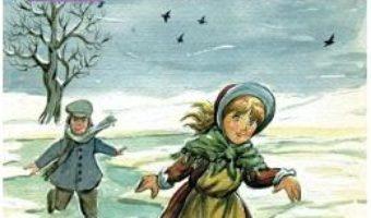 Cartea Patinele de argint – Mary-Elisabeth Mapes Dodge (download, pret, reducere)