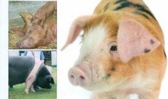 Cresterea porcilor – Liz Shankland PDF (download, pret, reducere)
