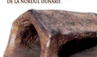 Antropologia spatiului domestic la comunitatile Gumelnita de la Nordul Dunarii – Ana Ilie PDF (download, pret, reducere)
