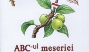 Abc-ul meseriei – Jean-Yves Prat PDF (download, pret, reducere)