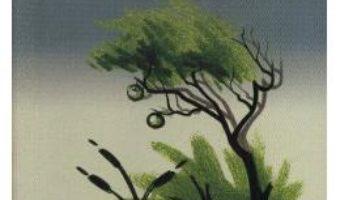 Cartea Cercuri in apa – Bruno Ferrero (download, pret, reducere)