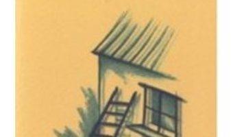 Cartea E cineva acolo sus? – Bruno Ferrero (download, pret, reducere)
