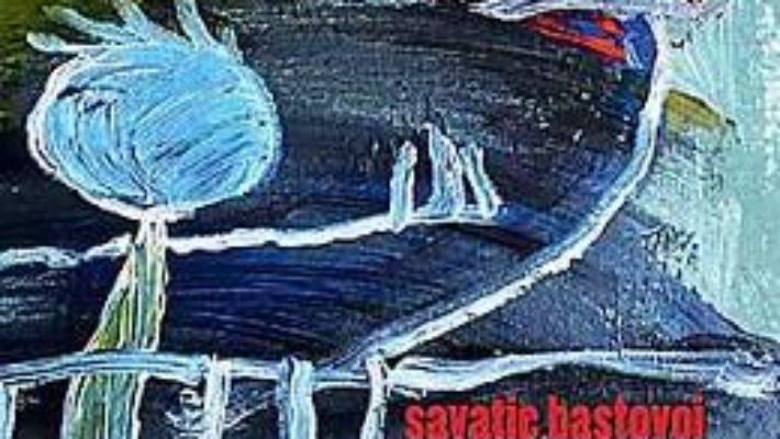Cartea Invataturile unei prostituate batrane catre fiul sau handicapat – Savatie Bastovoi (download, pret, reducere)