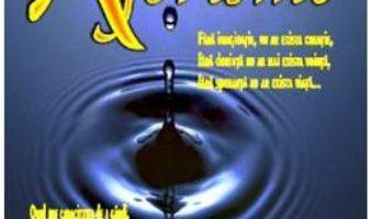 Aforisme. Decadent in trascendent – Iosif M. Cristian PDF (download, pret, reducere)
