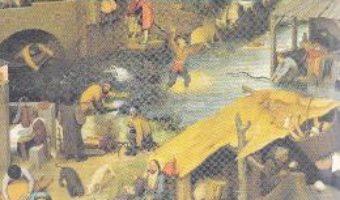Cartea Invoiala – George Balaita (download, pret, reducere)