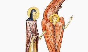 Tanarul batran. Sfantul Macarie in pustia inflorita – Petru Vornic PDF (download, pret, reducere)