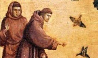 Pret Carte Saracutul lui Dumnezeu – Nikos Kazantzakis