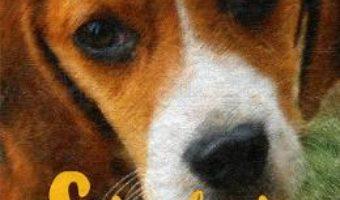 Cartea Shiloh – Phillis Reynolds Naylor (download, pret, reducere)