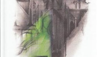 Elantris – Brandon Sanderson PDF (download, pret, reducere)
