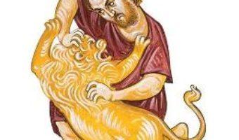 Povestea viteazului Samson – Ciprian Vidican PDF (download, pret, reducere)